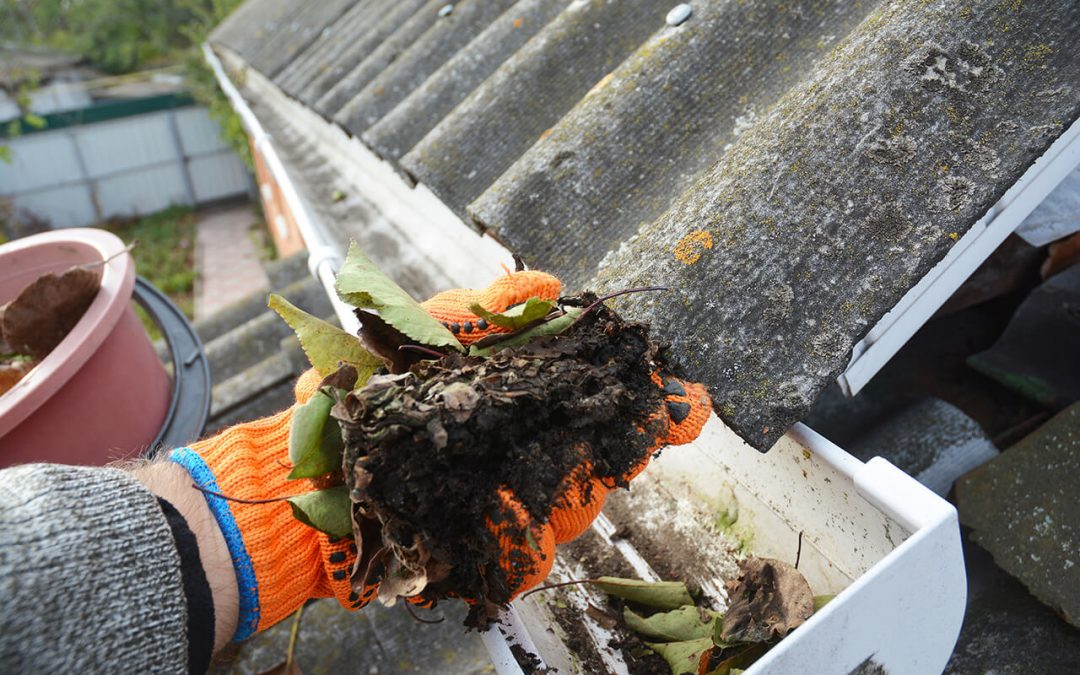 5 Tips for Cleaning Gutters In the Fall